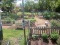 12th and Oak Street Garden