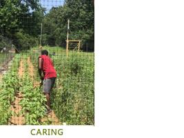 caring-2