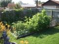 Cucumber Garden